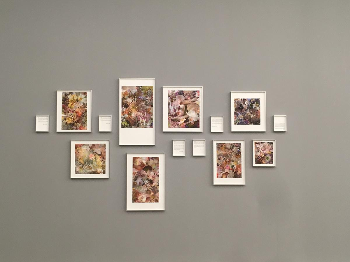 Liu Shiyuan Untitled 2014 Lambda prints dimensions...