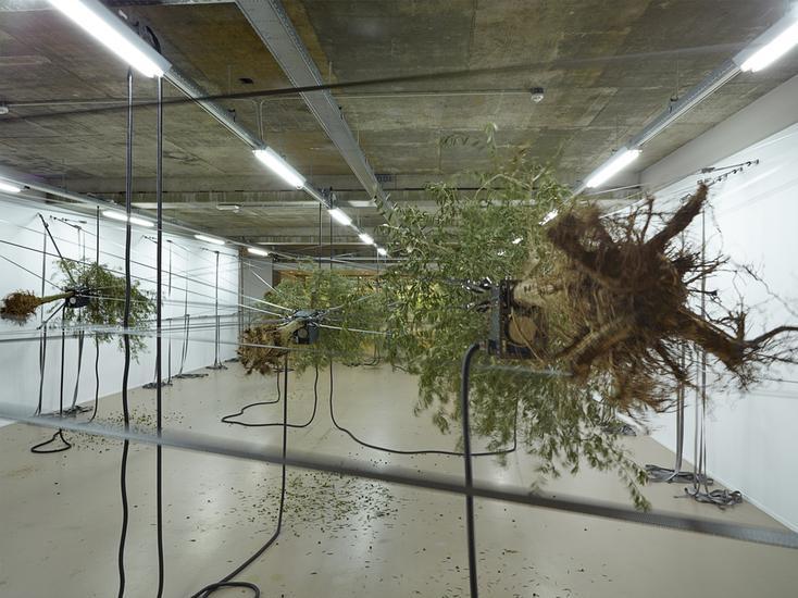 11 October 2014 - 25 January 2015 - Sensory Spaces, MUSEUM BOIJMANS VAN BEUNINGEN, ROTTERDAM - Siobhán Hapaska -  - Exhibitions