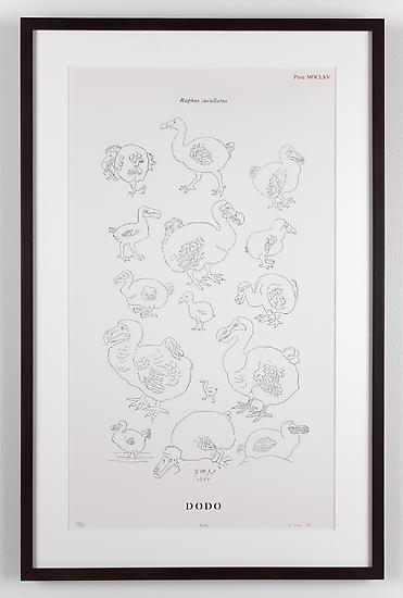 Mark DION Dodo 1995 silkscreen on paper 24 x 14 in...