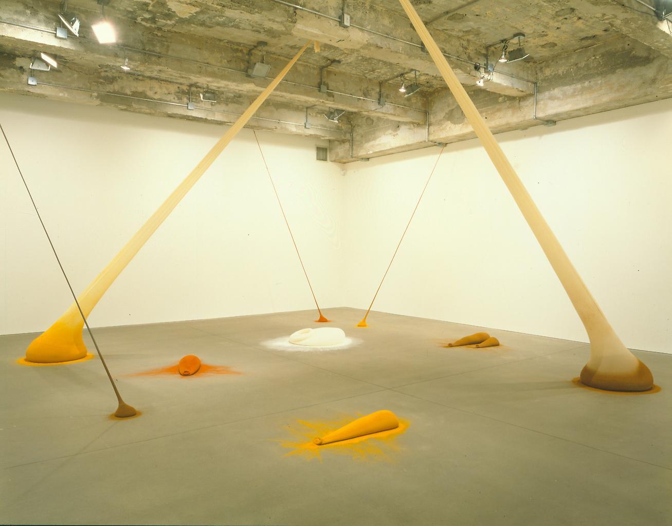 Installation view Tanya Bonakdar Gallery 1997...