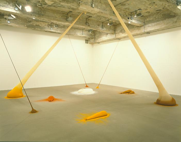 Installation view Tanya Bonakdar Gallery 1997...