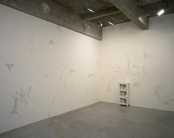Sandra Cinto Installation view 1999...