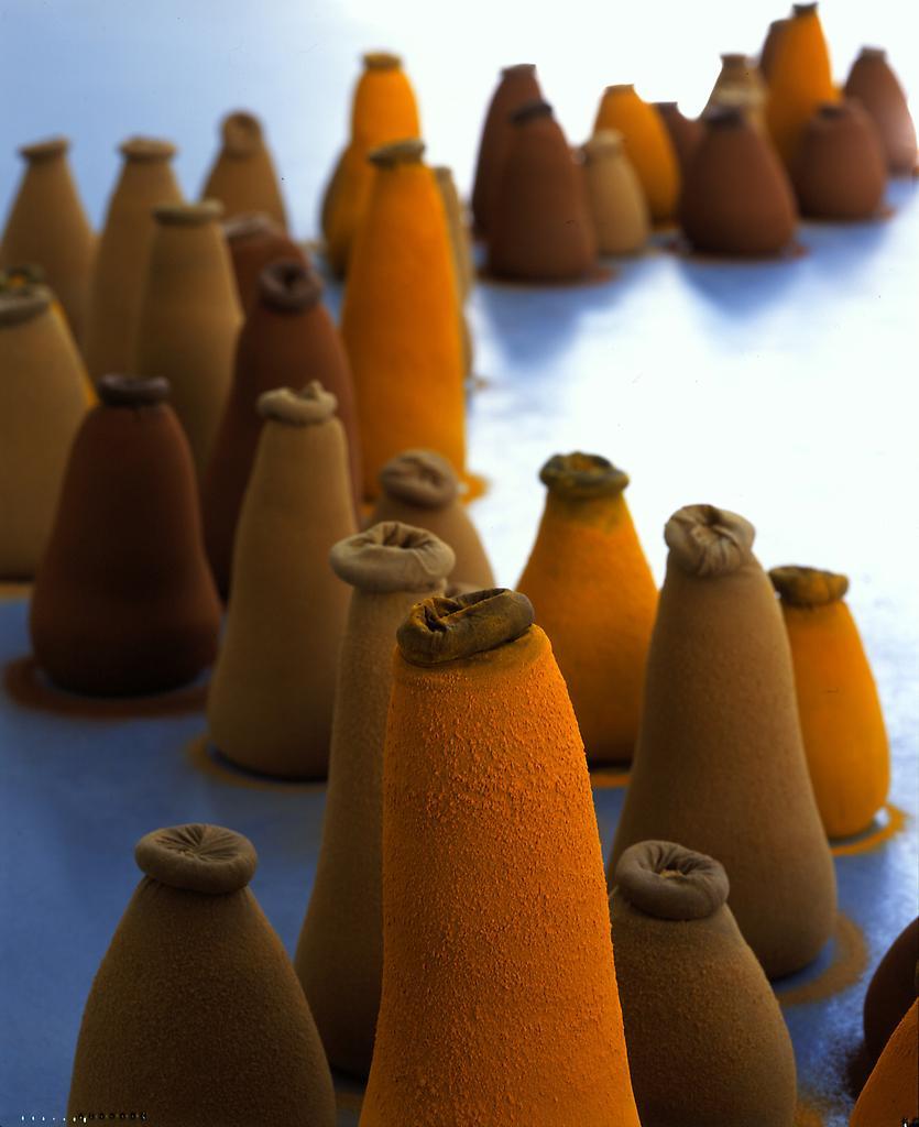 Ernesto NETO Lipzoid Spice Garden 2000 Stockings,...