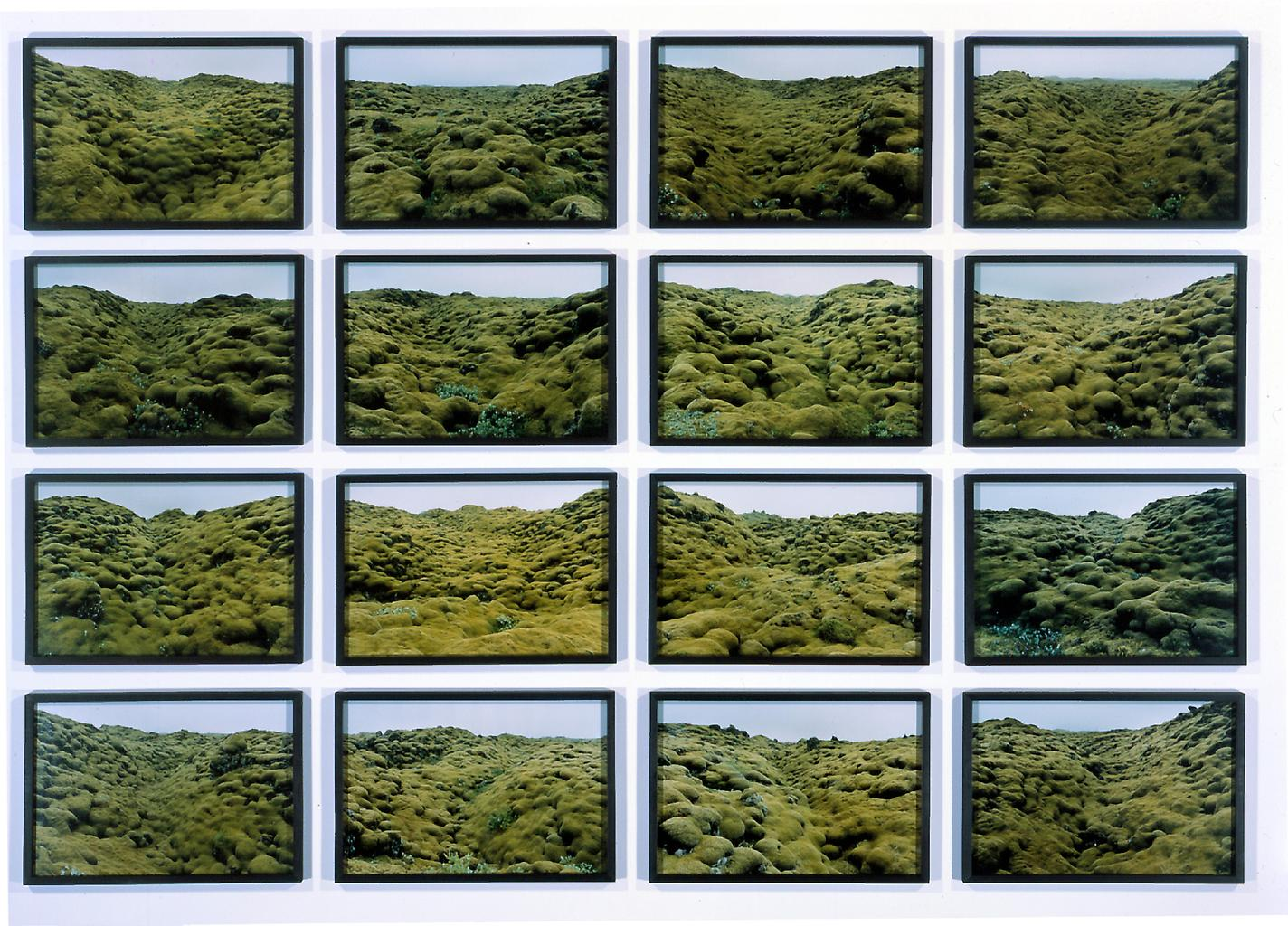 Olafur Eliasson The moss valley series 2002 16 col...