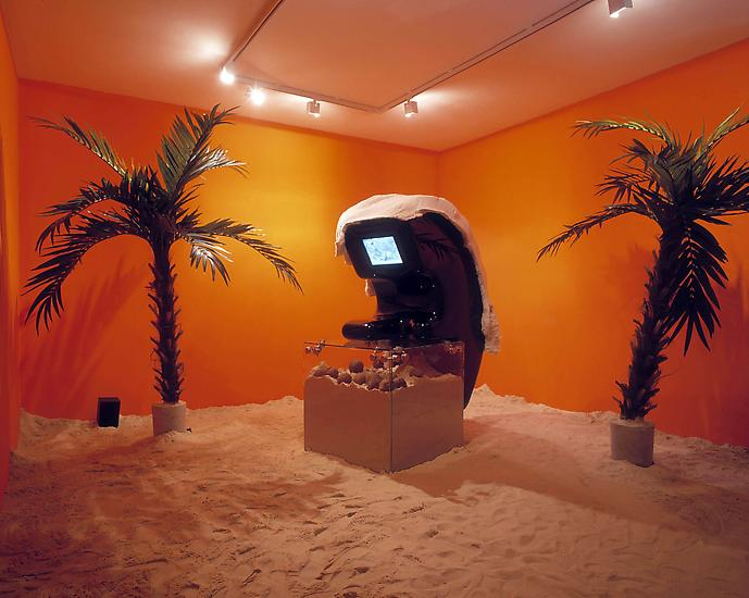 Siobhan Hapaska Playa de los Instranquilos 2004 Va...