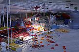 Sarah Sze Tilting Planet (carpet) 2006/2007 mixed...