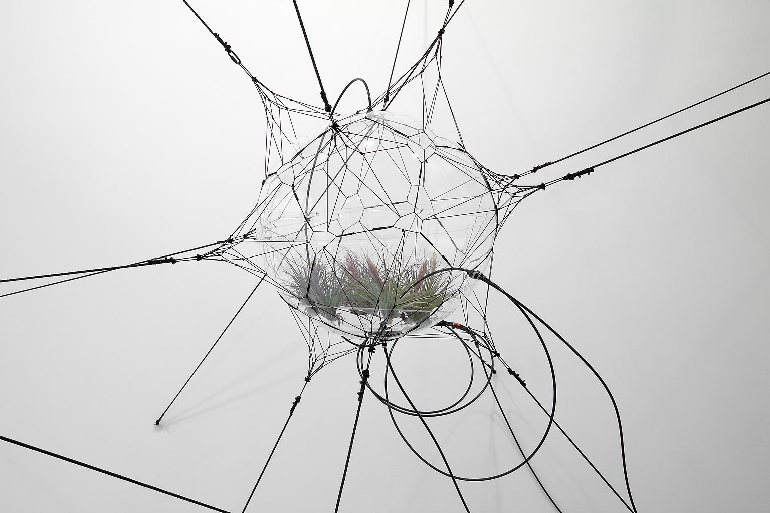 Tomas SARACENO Biosphere 06 2009 acrylic, rope, ny...