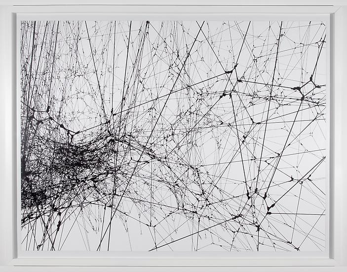 Tomas SARACENO Focus on 14 Billions 2010 c-print m...