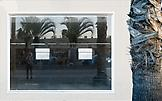 Sabine HORNIG Fenster mit Palme / Window with Palm...