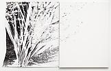 Analia Saban Slingshot (Plant) 2011 gelatin silver...