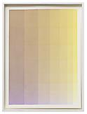 Olafur Eliasson Complementary colour test 1 2012 w...