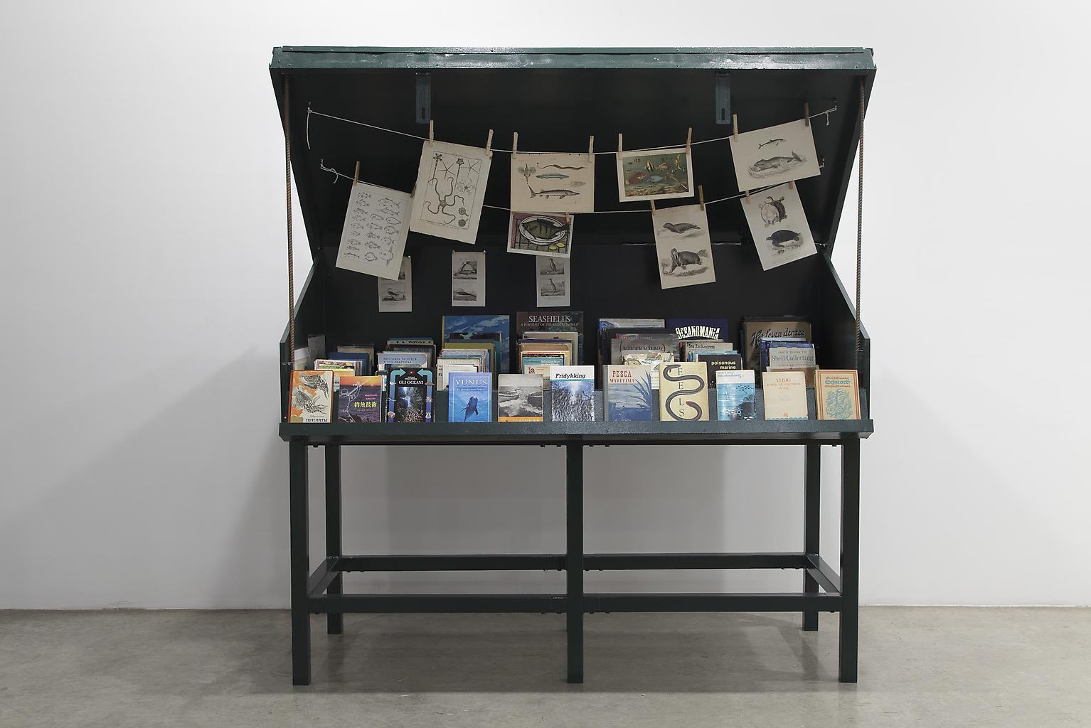 Mark DION Sea Life 2013 book cart, books, prints 7...
