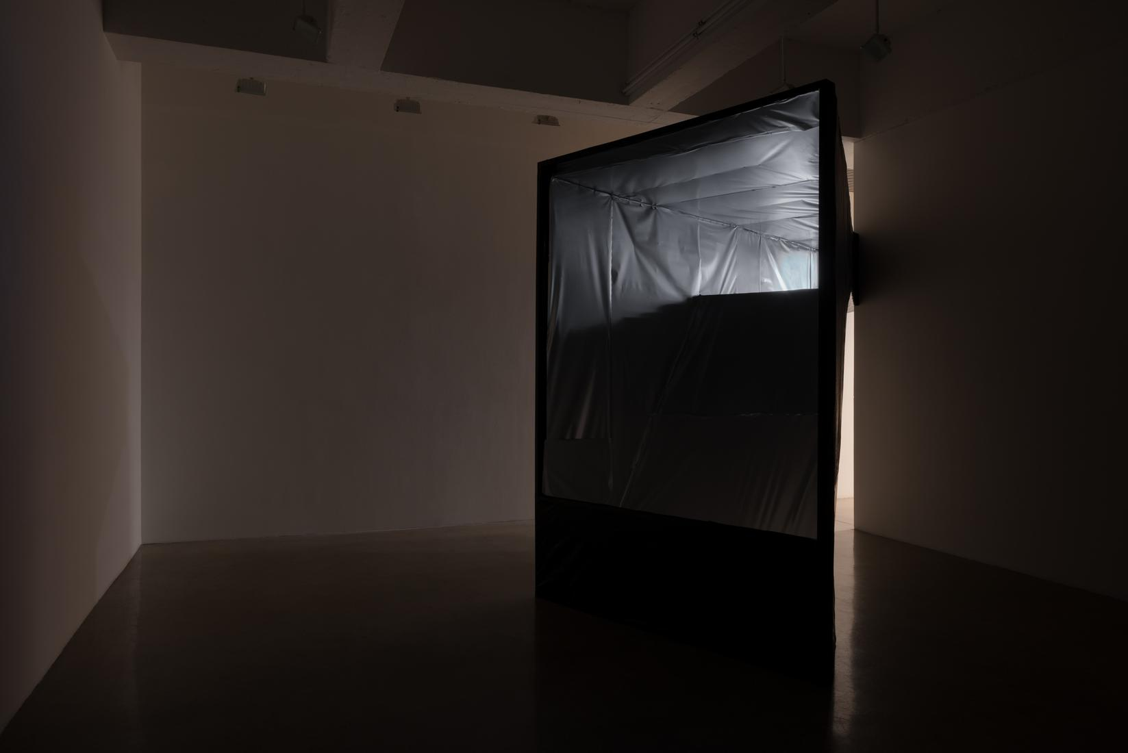 June 6 — July 26, 2019 - curated by Jenny Jaskey and Mia Locks - Living in a Lightbulb -  - Exhibitions