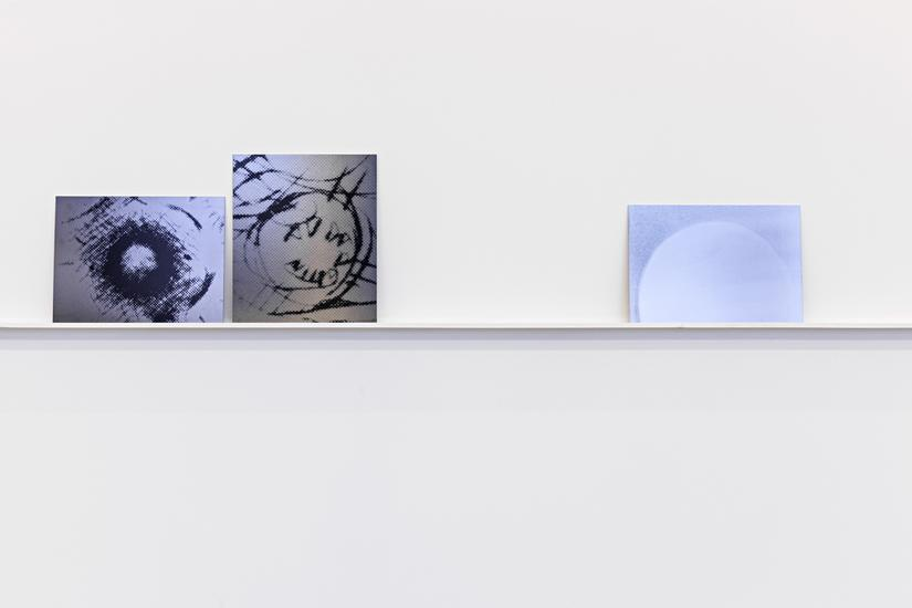 Lisa Oppenheim: Forever is Composed of Nows - Exhibitions