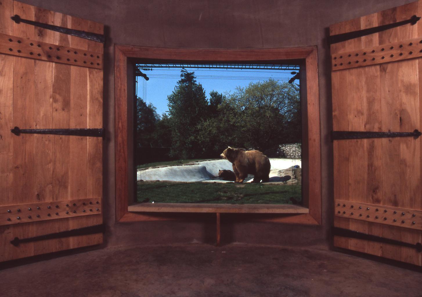 Mark Dion Dundee Bear Broch 2005 Camperdown Wildli...