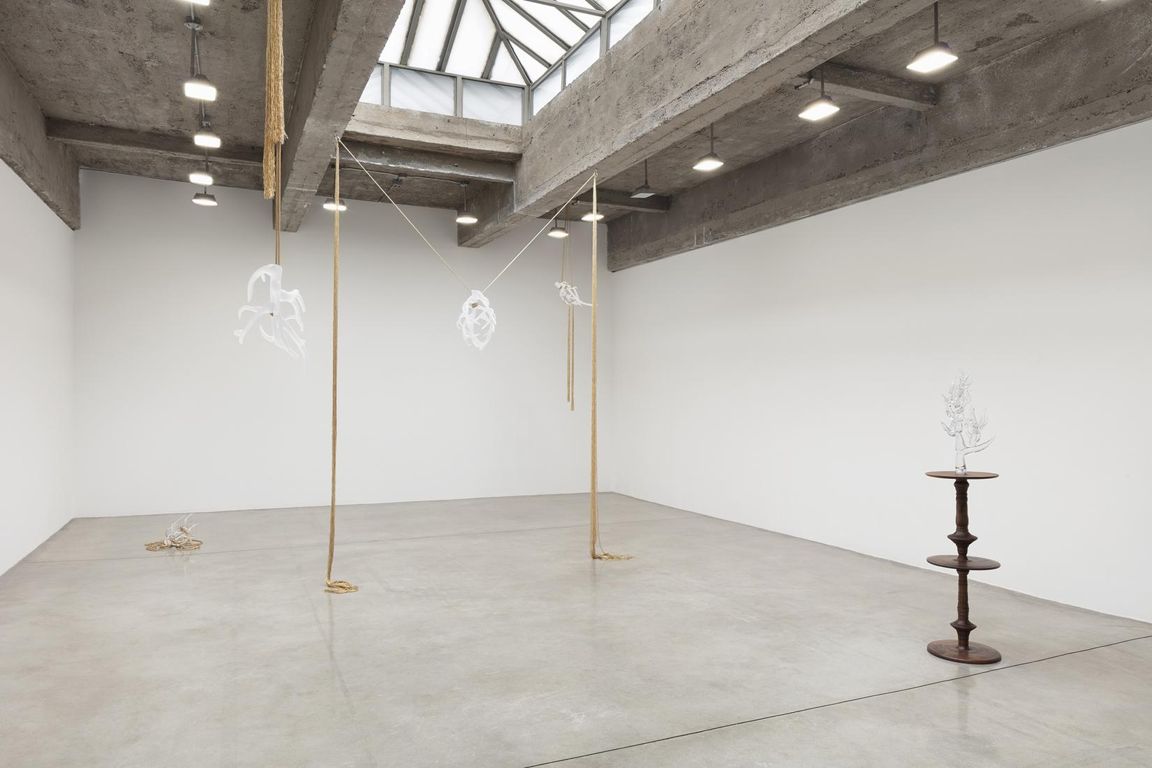 This is an installation image of Kelly Akashi exhi...
