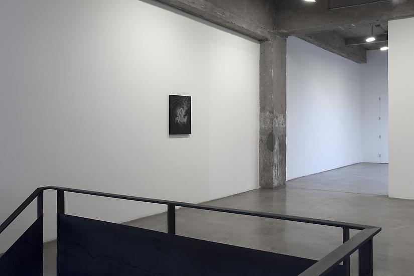 24 October - 21 December 2013 - Piece of Silence - Sandra Cinto - Exhibitions