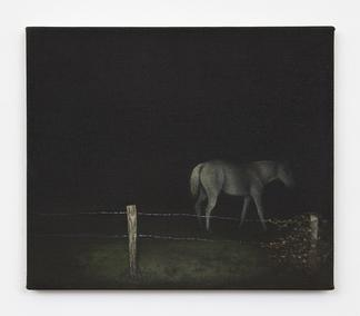 Dana POWELL Night horse 2018 Oil on linen 12 x 14...