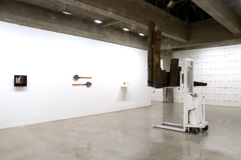 9 January - 6 February 2010 - curated by Mark Dion - Strange Travelers - Exhibitions