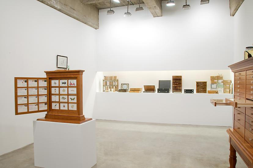 9 January - 6 February 2010 - Travels of William Bartram - Reconsidered - Mark Dion - Exhibitions
