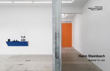 HAIM STEINBACH: appear to use