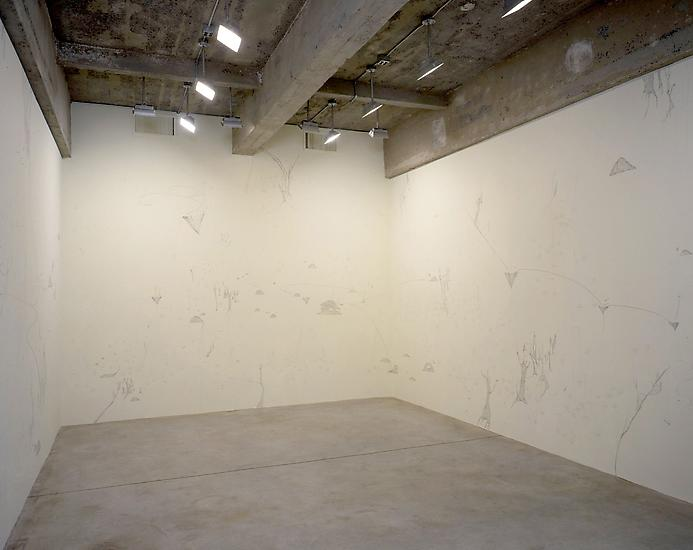 25 May - 2 July 1999 - Constructed Happiness - Sandra Cinto - Exhibitions