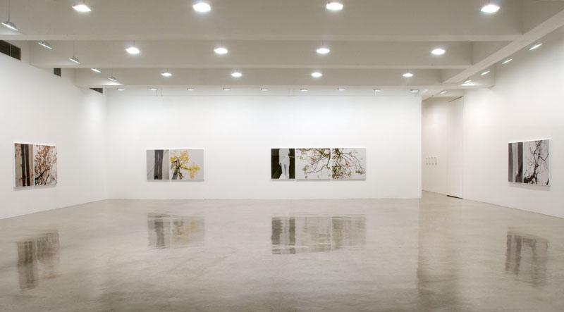 Installation view Tanya Bonakdar Gallery, 2010...
