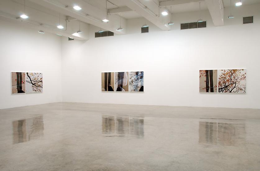 Uta Barth - Exhibitions