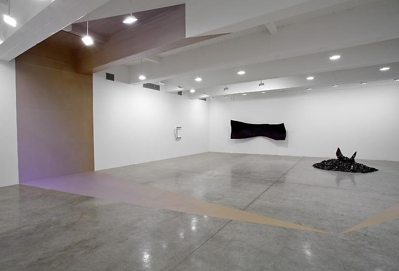 10 February - 19 March 2011 -  - Liz Larner - Exhibitions