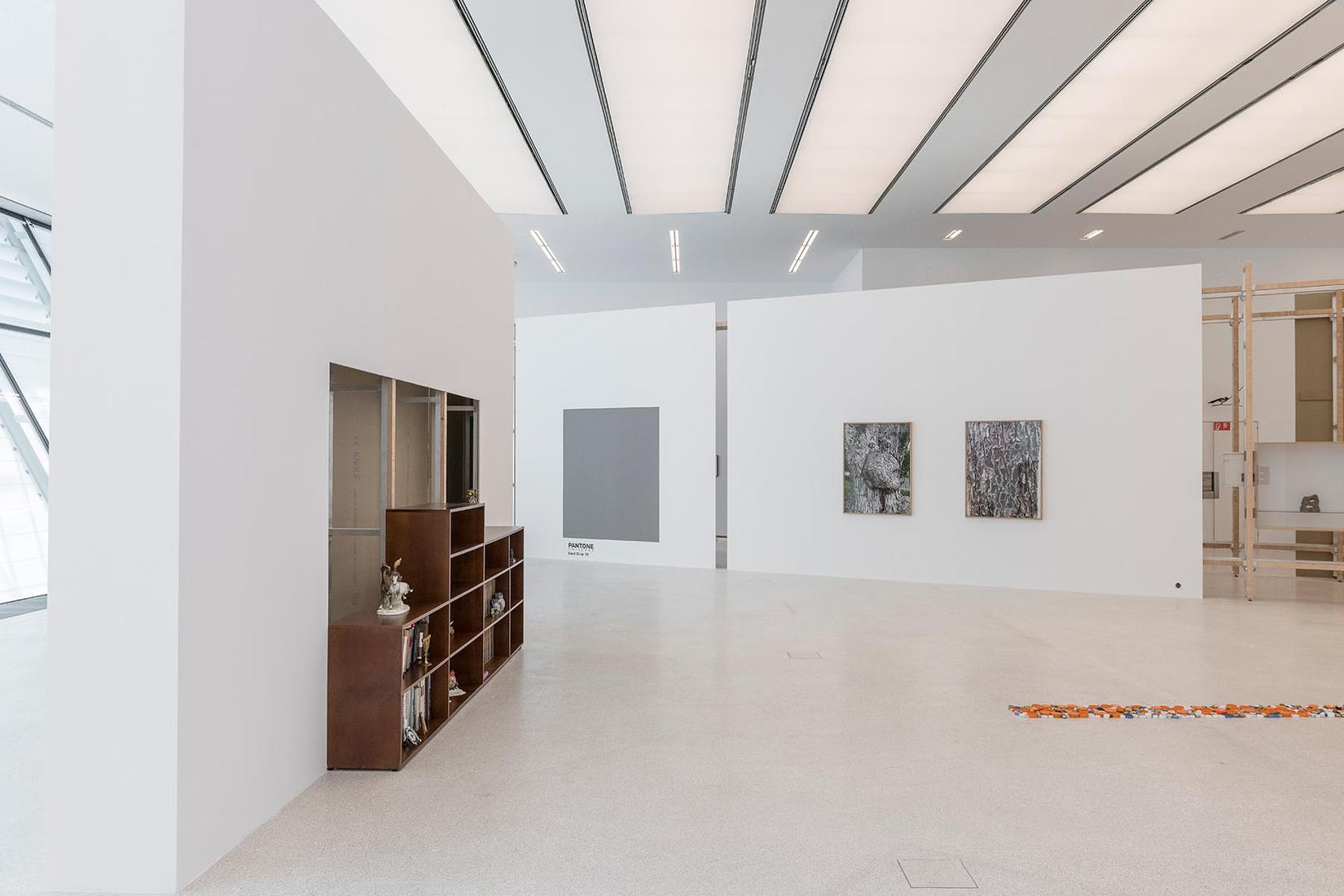 This is an installation image of Haim Steinbach's...