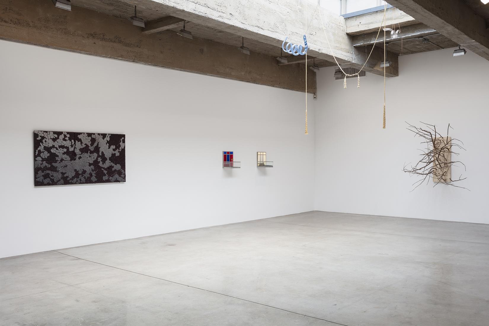 Pine Barrens - Exhibitions