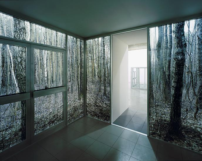 Sabine HORNIG Large Cube in Forest 2004 Transparen...