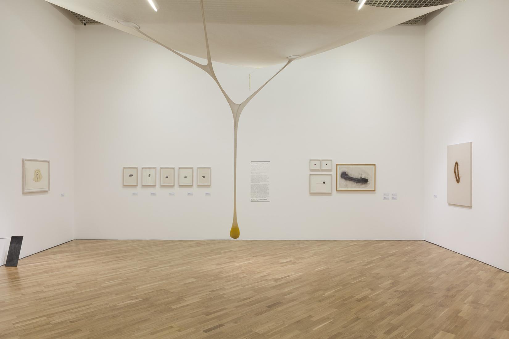MARCH 30 — JULY 15, 2019 - PINACOTECA, SÃO PAULO - ERNESTO NETO: SOPRO (BLOW) -  - Exhibitions