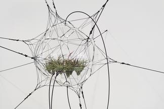 "This is a work of Tomás SARACENO, ""Biosphere 06"",..."