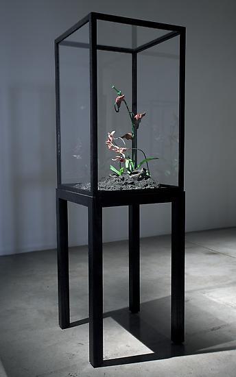 Mat COLLISHAW The Venal Muse. Lafage. 2012 r...