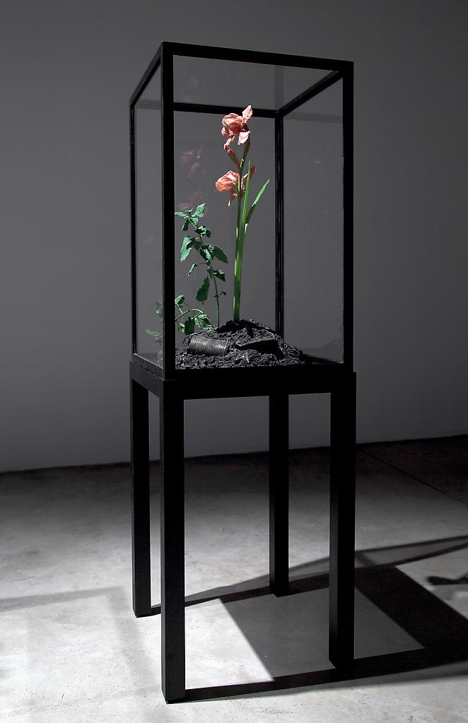 Mat COLLISHAW The Venal Muse.  Evergreen. 201...