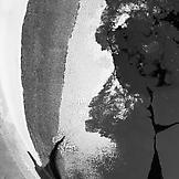 Rivane Neuenschwander Oil Spill 2012 pigment inkje...