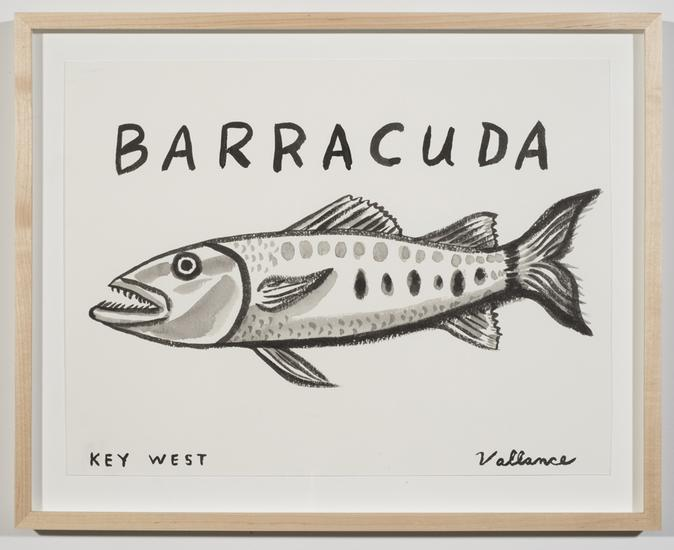Key West Barracuda with Razor-sharp Teeth 2013 ink...