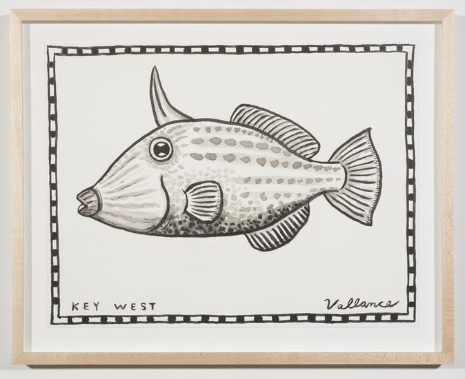 Key West Filefish 2013 ink on paper 12 x 16 inches...