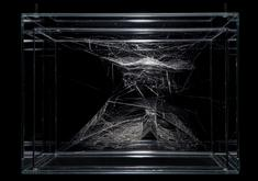 Tomás Saraceno in conversation with Leila W. Kinn...
