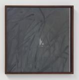 Lisa Oppenheim Lunagrams (Ann Craven) 14,201...