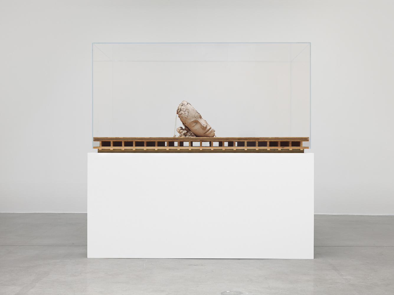Mark Manders Dry Head on Wooden Floor 2015 Painted...