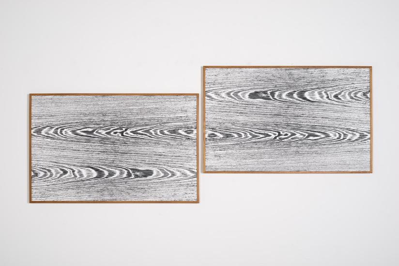 Lisa Oppenheim Landscape Portraits (Teak) (Version...
