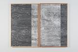 Lisa Oppenheim Landscape Portraits (Birdseye Maple...