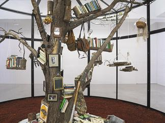 Mark DION The Library for the Birds of New York 20...