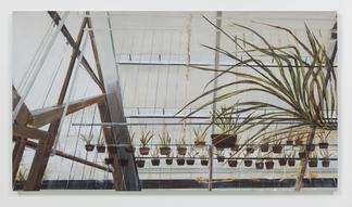 Carla KLEIN Untitled 2017 oil on canvas 63 x 114 1...