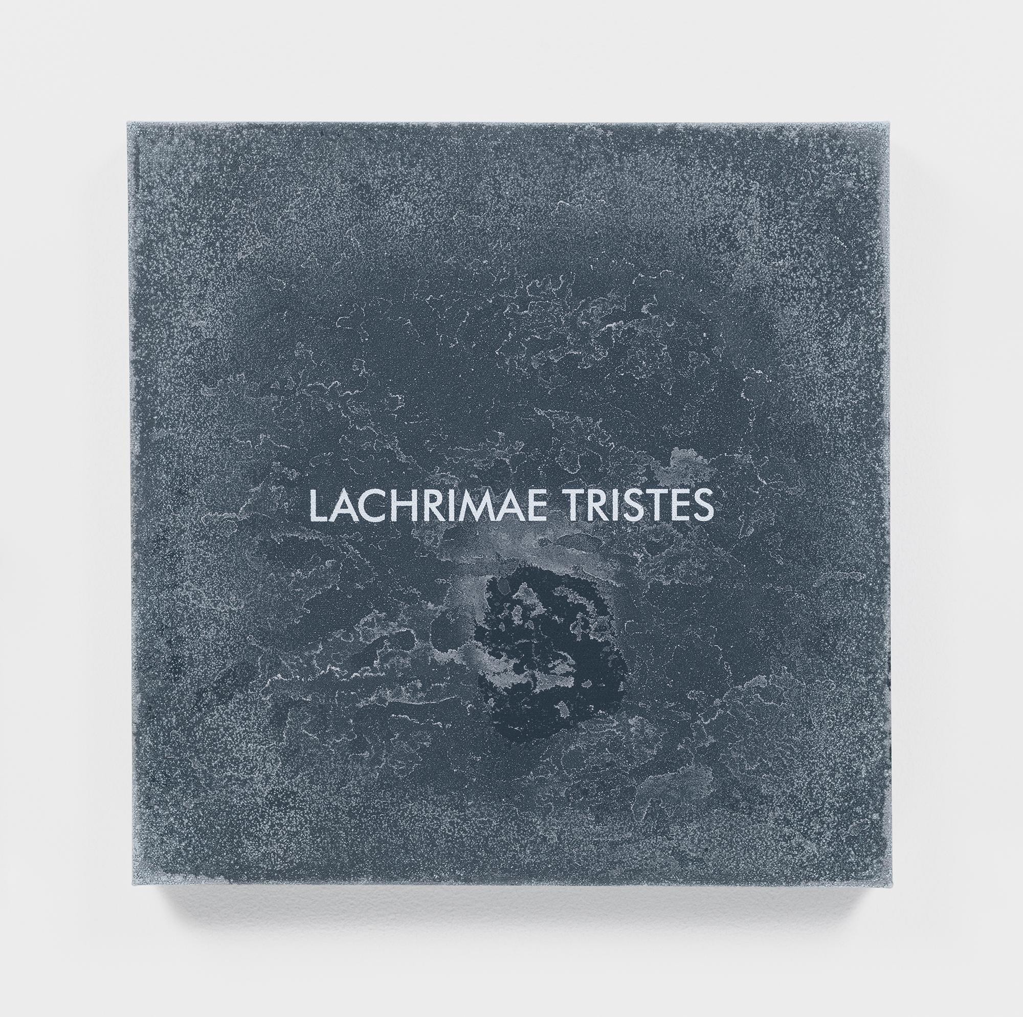 Susan PHILIPSZ Lachrimae Antiquae II 2017 Acrylic,...