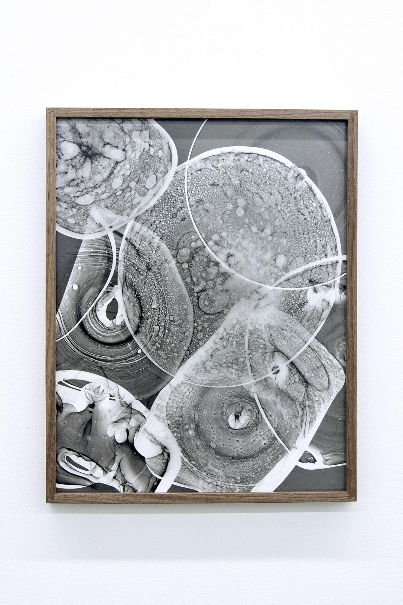 Kelly Akashi Lenses 2018 Silver gelatin photogram...
