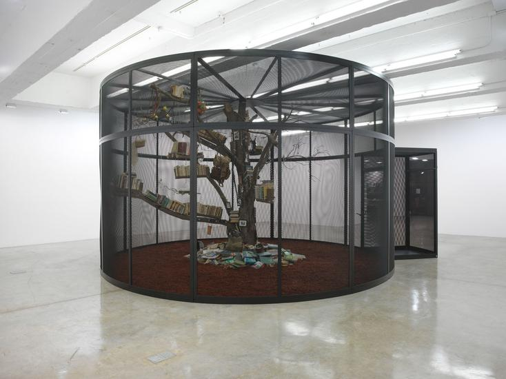 25 February - 16 April 2016 -  - Mark Dion: The Library for the Birds of New York and Other Marvels - Exhibitions