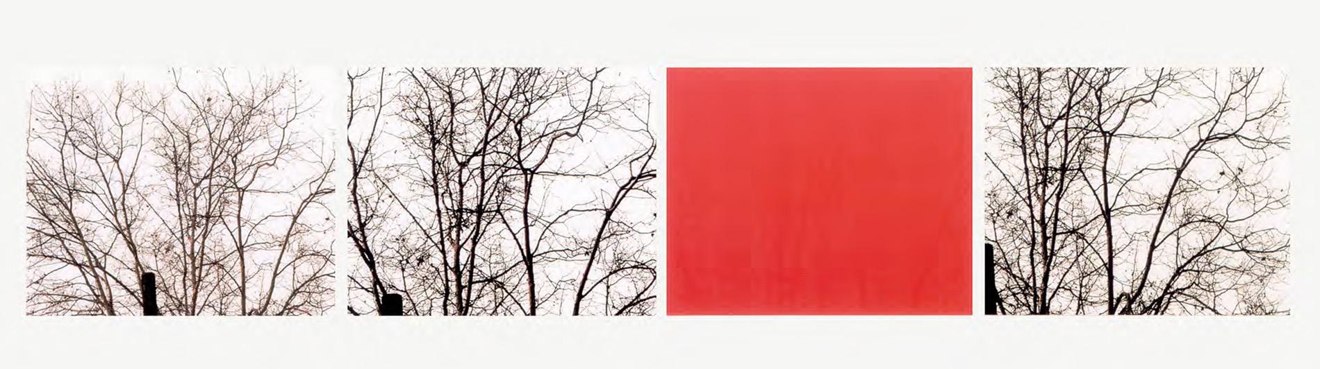 Uta Barth white blind (bright red) (02.13) 2002 fa...